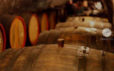 Pariul lui Paul Fulea (Crama Histria): Un milion de litri de vin produsi anual!