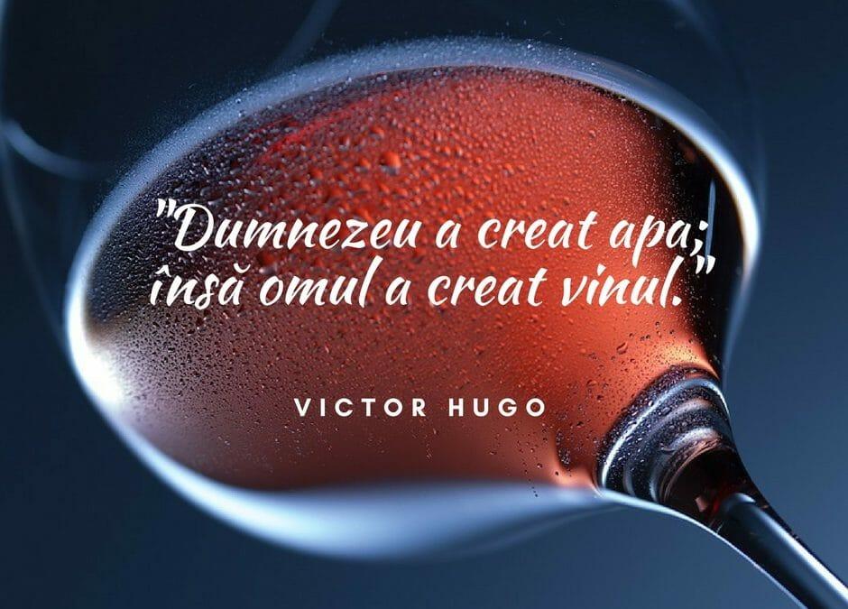 Citate cu si despre vin